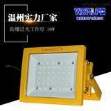 SW8183化工厂50WLED防爆投光灯led照明灯SW8183