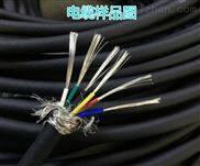 DJFP2VP耐高温电缆DJFP2VP计算机电缆