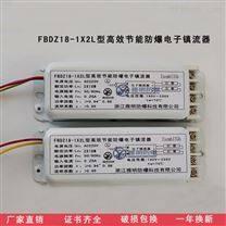 YJD-40W全塑荧光灯应急电源装置防爆镇流器
