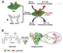 供应ROS活性氧响应纳米载体-酮缩硫醇TK
