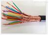 DJYPV22屏蔽电缆 铠装计算机电缆
