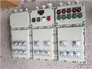 BSG-多路动力(照明)防爆配电柜