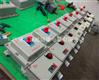 BDZ52-20/3P防爆断路器价格