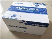 人巨細胞病毒IgG(CMVIgG)Elisa試劑盒-價格