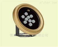 BCP170飞利浦灵智单色14W/RGB16.5W LED水下灯