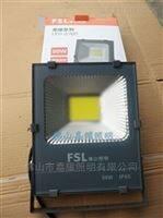 荣耀佛山照明新款荣耀50W100W防水反腐LED泛光灯