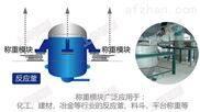 1000kg电子称重仪,新龙县称重传感器