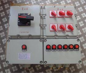 BXM6951-DIP非标防爆配电箱