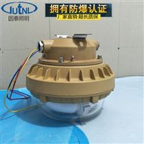 SBD1110-YQL40直销免维护节能防爆灯