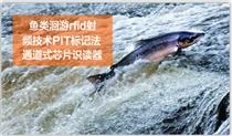RFID读写器—鱼类洄游通道式芯片识读器