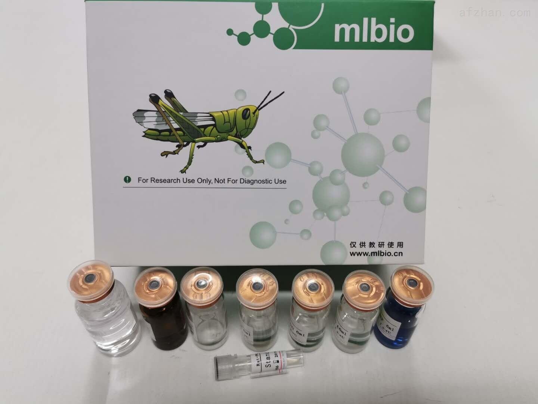 猴型逆转录病毒PCR检测试剂盒