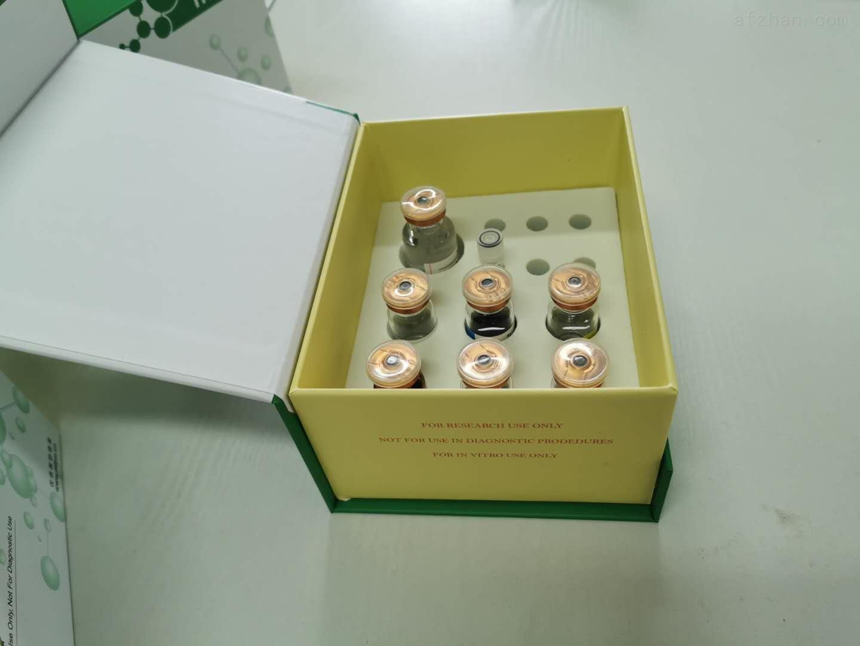 苛养木杆菌PCR检测试剂盒
