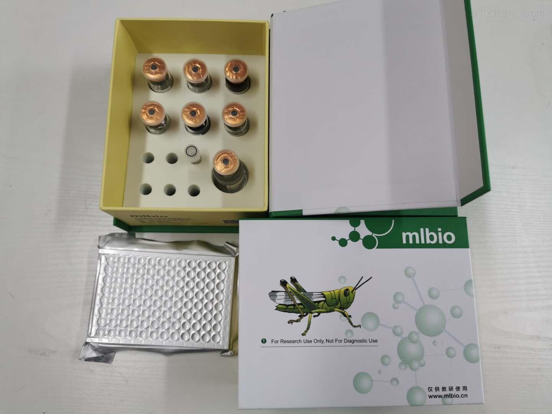 克柔念珠菌PCR检测试剂盒