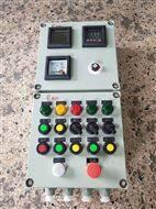BXM53防爆照明配电箱BXD53防爆控制箱