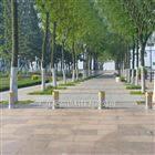 NGM开放式公园交通警示伸缩防撞路障升降柱