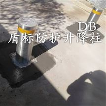 DB大门拦截伸缩柱 半自动防撞升降柱路桩