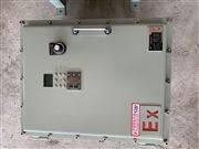 南京鑄鐵(鋼板焊接)防爆電箱BXX型號定做