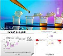 鸭肝炎病毒型PCR试剂盒价格