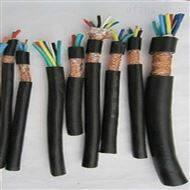ZR-DJYP2VP2阻燃计算机电缆