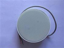 金泽A13双麦克风原声拾音器