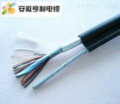 20度直流电阻12.1/kmZR-JYJVPLR信号电缆