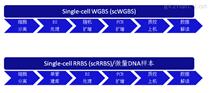 單細胞全基因組甲基化測序技術