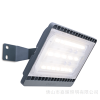 BWP150飞利浦LED隧道灯40W小功率LED路灯