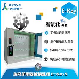 埃克萨E-key4mini埃克萨斯E-key5mini博物馆智能保险钥匙箱