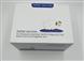 原装原装兔骨退化特异性标志物(CTX-2)ELISA高质量厂家