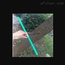 M391191植物/树木生长锥  中西器材)LB066/M391191
