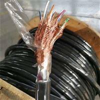 DJYPVP22计算机电缆