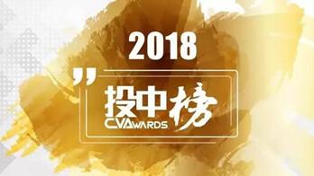 """投中2018年度榜單揭曉 人工智能成風險投資""""黃金賽道"""""""